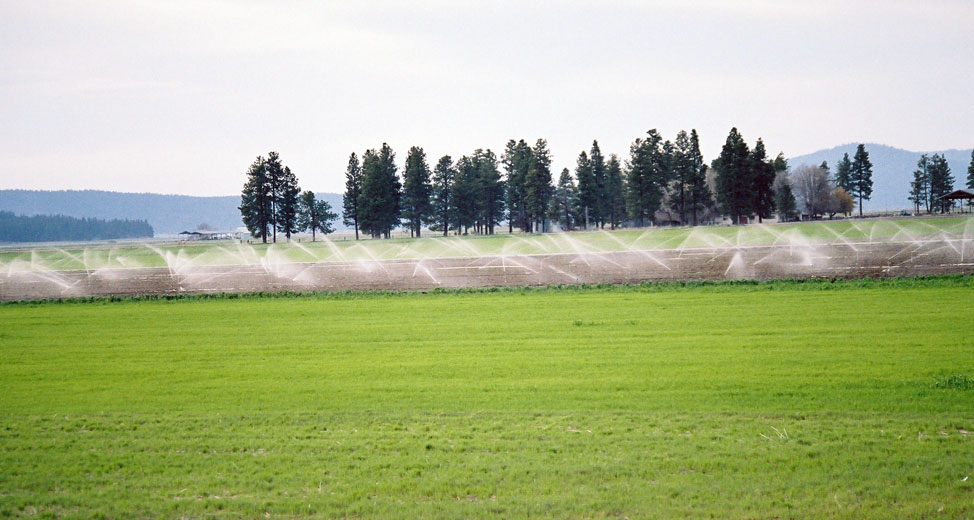 Licensing Groundwater in BC